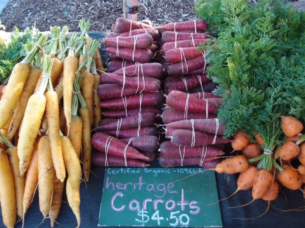 The many colours and flavours of fresh, organic carrots