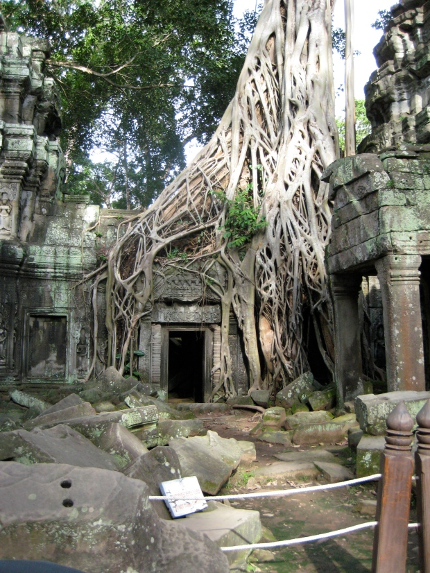 One of the many famous temples at the Angkor Wat site