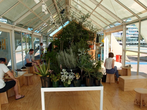 Inside the glasshouse