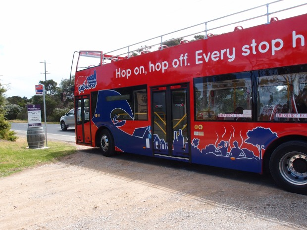 The Sparkling new Explorer bus popping around the Peninsula